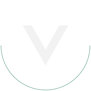 hire dedicated vuejs programmers
