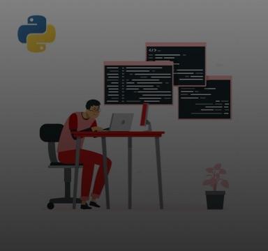 choose python programming language