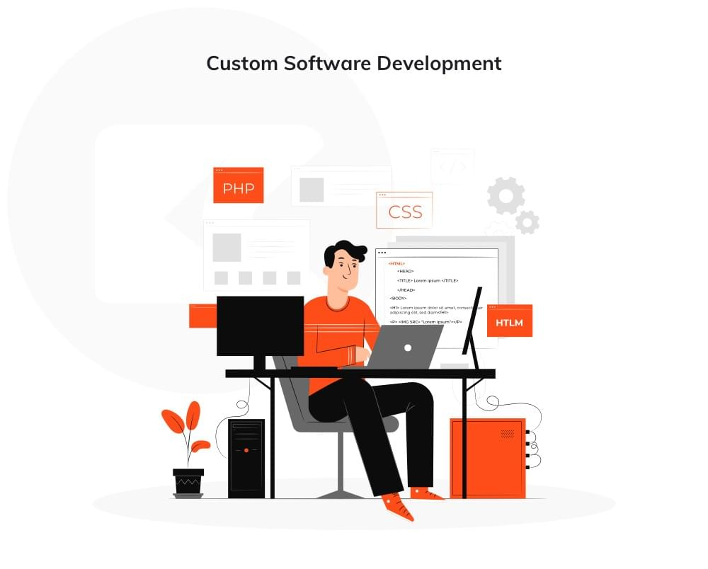 bespoke software development representation graphics
