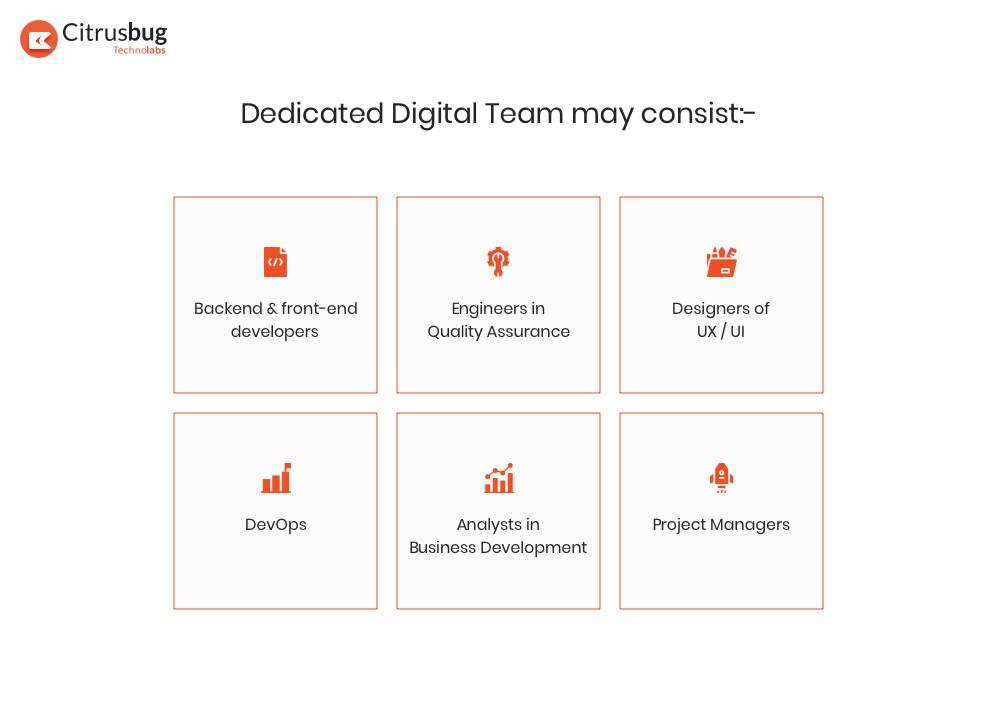 Dedicated digital team for software development